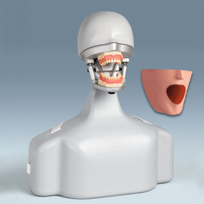 kemal-dis+fantom-kafa+phantom-head+frasaco+dental-egitim-sistemi+fantom-egitim-sistemi